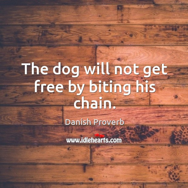 Image, The dog will not get free by biting his chain.