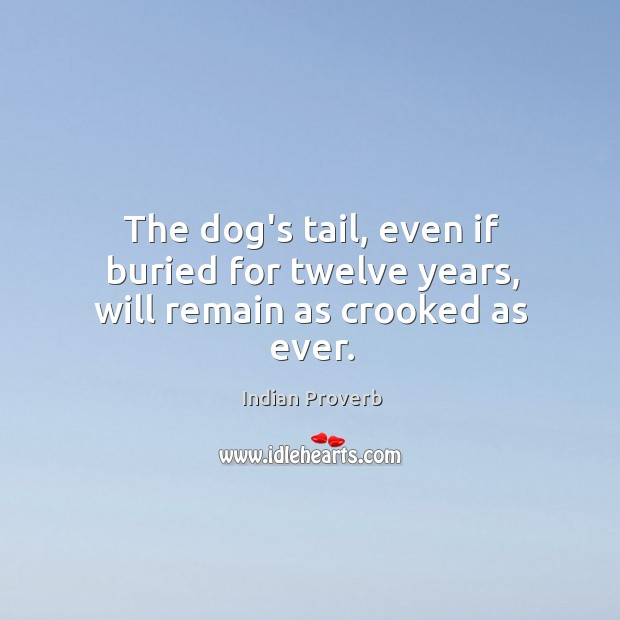 Image, The dog's tail, even if buried for twelve years, will remain as crooked as ever.