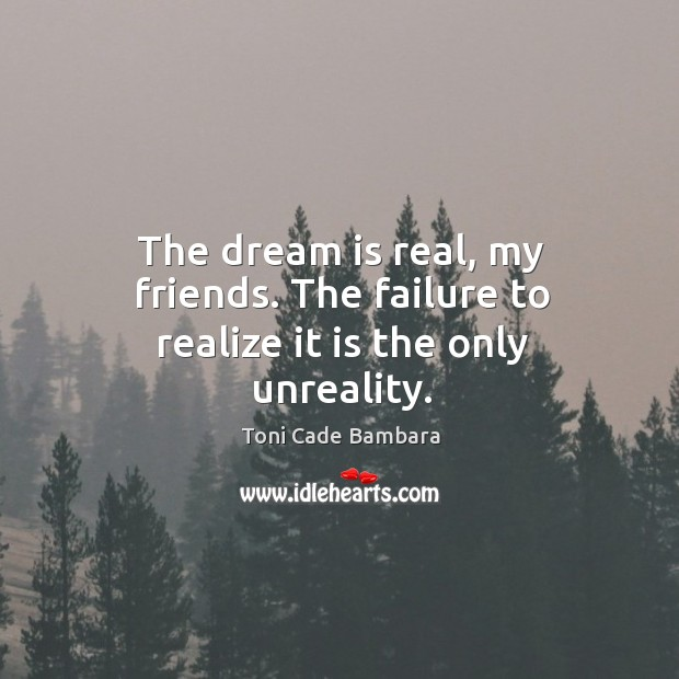 The dream is real, my friends. The failure to realize it is the only unreality. Toni Cade Bambara Picture Quote