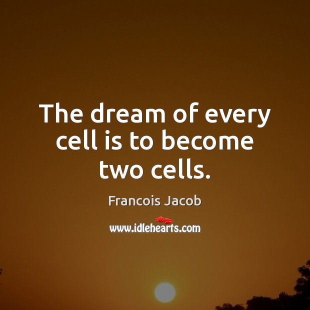 Image, The dream of every cell is to become two cells.