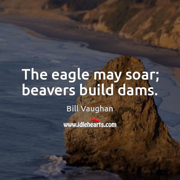 The eagle may soar; beavers build dams. Image