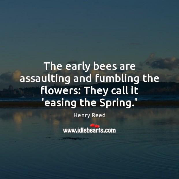 The early bees are assaulting and fumbling the flowers: They call it 'easing the Spring.' Henry Reed Picture Quote