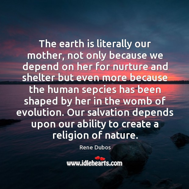 The earth is literally our mother, not only because we depend on Rene Dubos Picture Quote