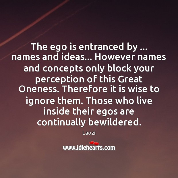 Image, The ego is entranced by … names and ideas… However names and concepts