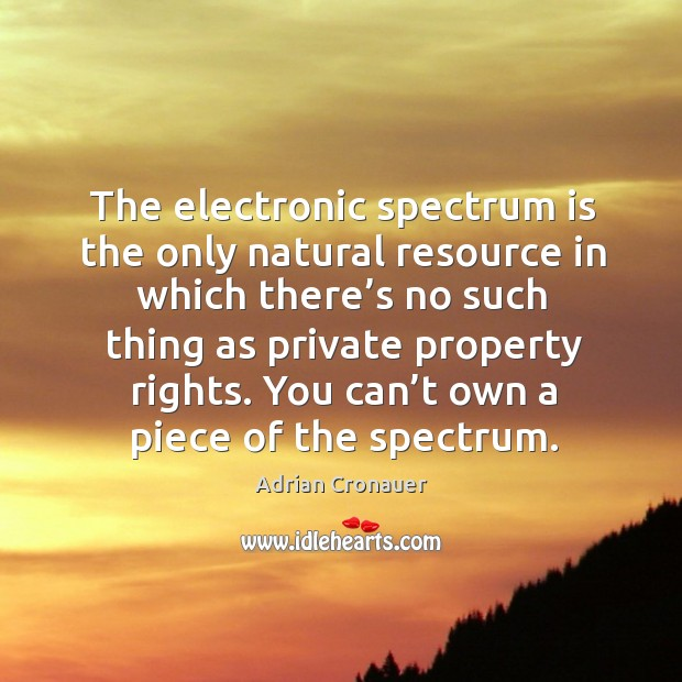 The electronic spectrum is the only natural resource in which there's no such thing as private Image
