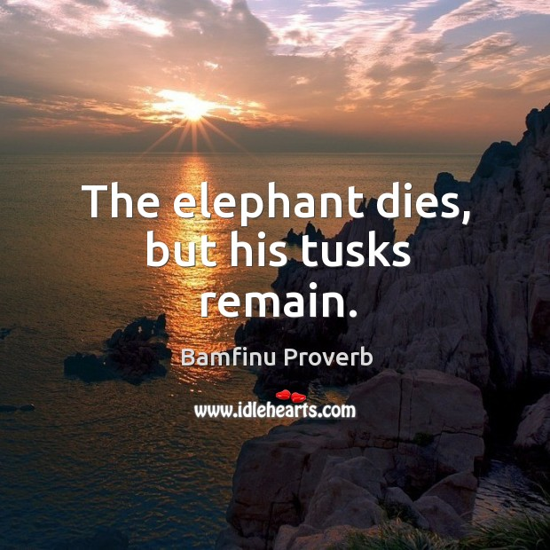 The elephant dies, but his tusks remain. Bamfinu Proverbs Image