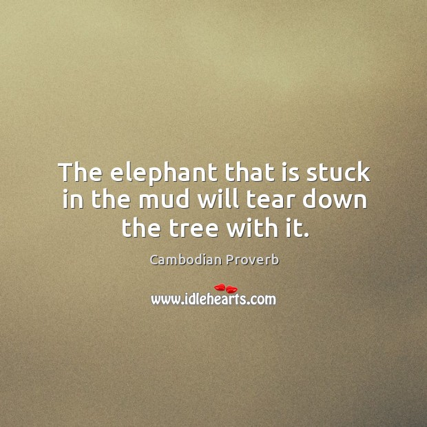 The elephant that is stuck in the mud will tear down the tree with it. Cambodian Proverbs Image
