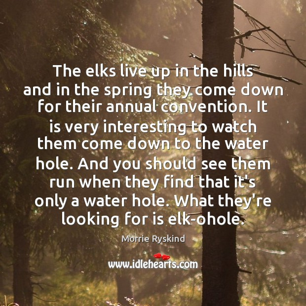 The elks live up in the hills and in the spring they Image