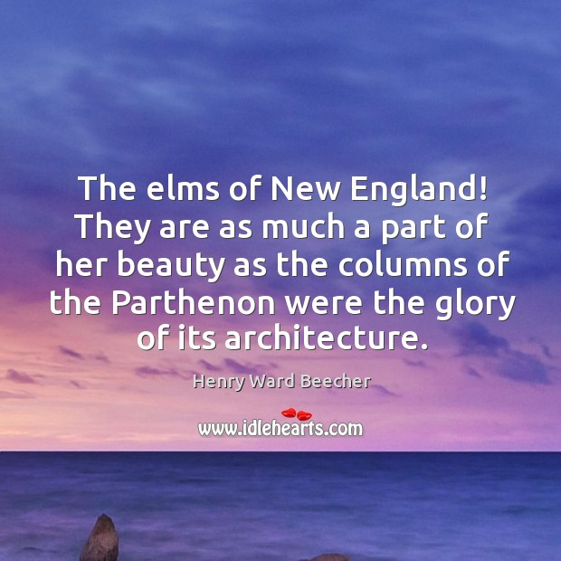 Image, The elms of New England! They are as much a part of