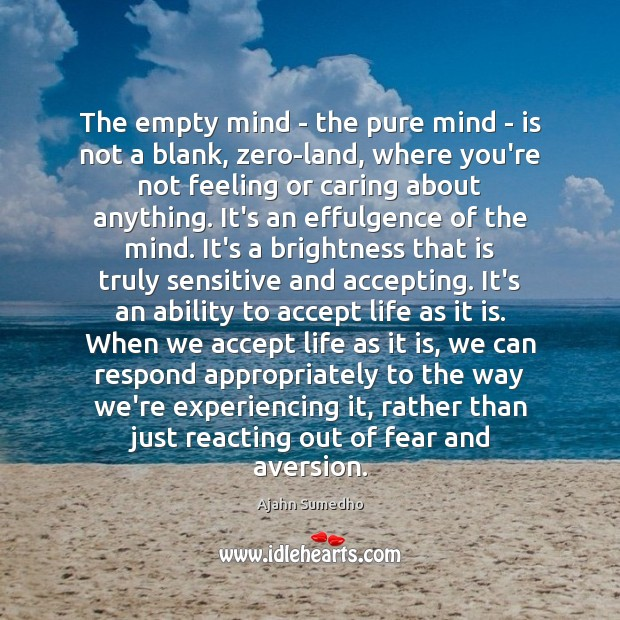 Image, The empty mind – the pure mind – is not a blank,