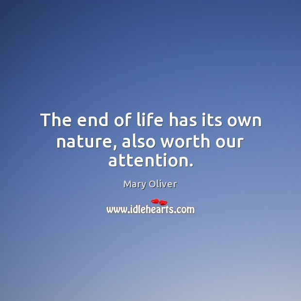 The end of life has its own nature, also worth our attention. Image