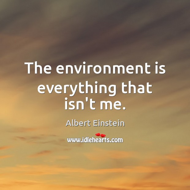 The environment is everything that isn't me. Image