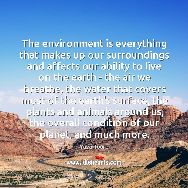 The environment is everything that makes up our surroundings and affects our Image