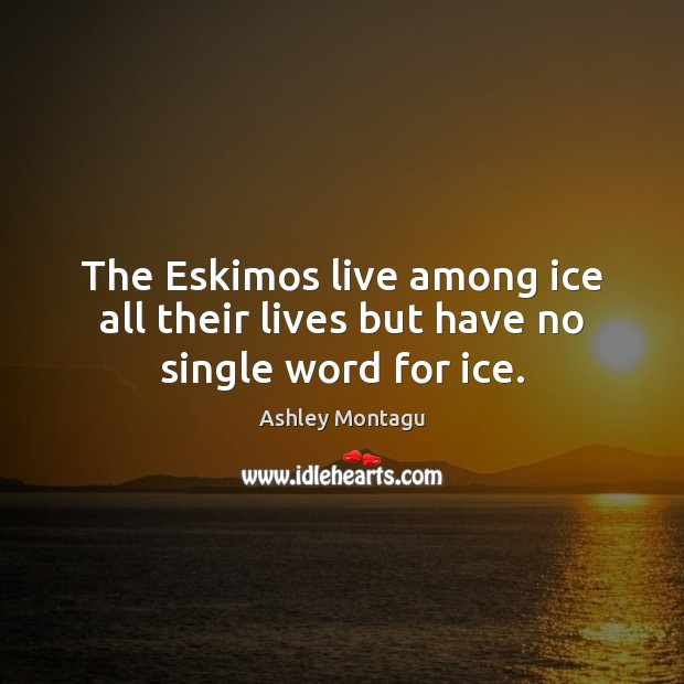 Image, The Eskimos live among ice all their lives but have no single word for ice.