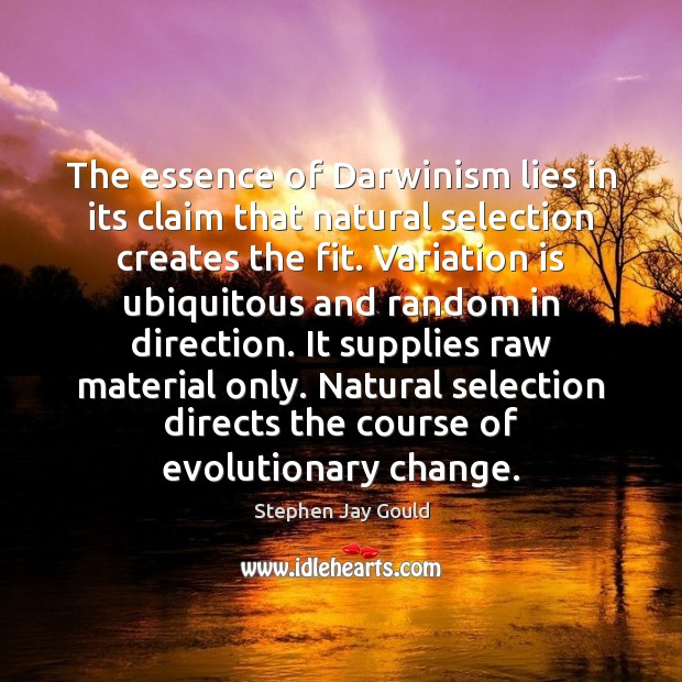 The essence of Darwinism lies in its claim that natural selection creates Stephen Jay Gould Picture Quote