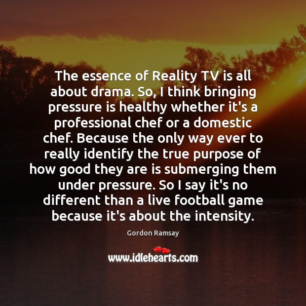 The essence of Reality TV is all about drama. So, I think Gordon Ramsay Picture Quote