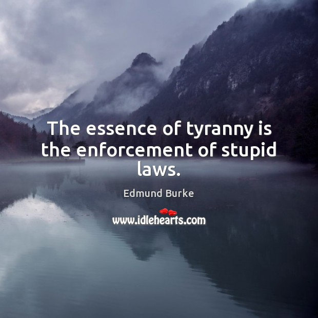 The essence of tyranny is the enforcement of stupid laws. Edmund Burke Picture Quote