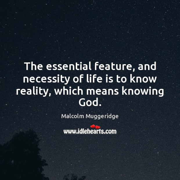 The essential feature, and necessity of life is to know reality, which means knowing God. Image
