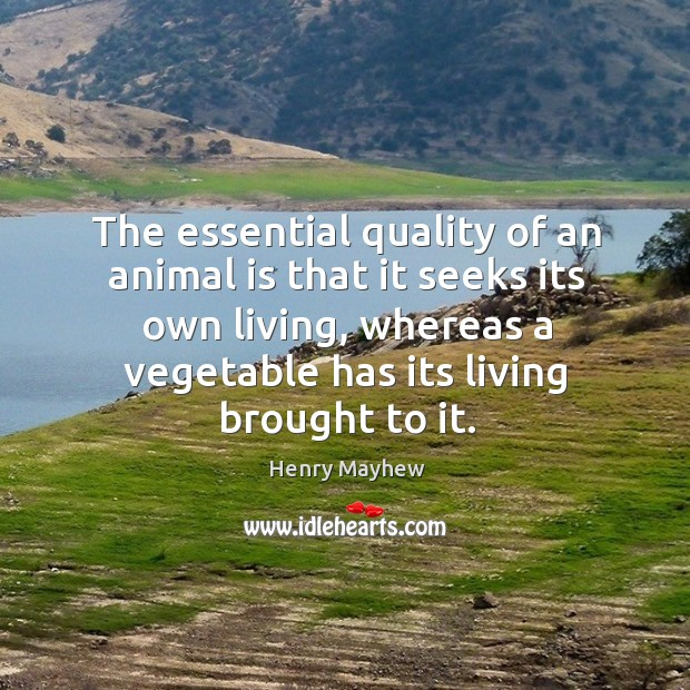 The essential quality of an animal is that it seeks its own living, whereas a vegetable has its living brought to it. Image