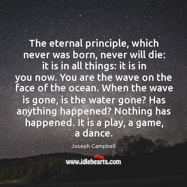 The eternal principle, which never was born, never will die: it is Image