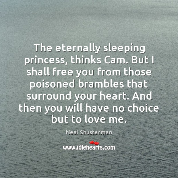 The eternally sleeping princess, thinks Cam. But I shall free you from Image
