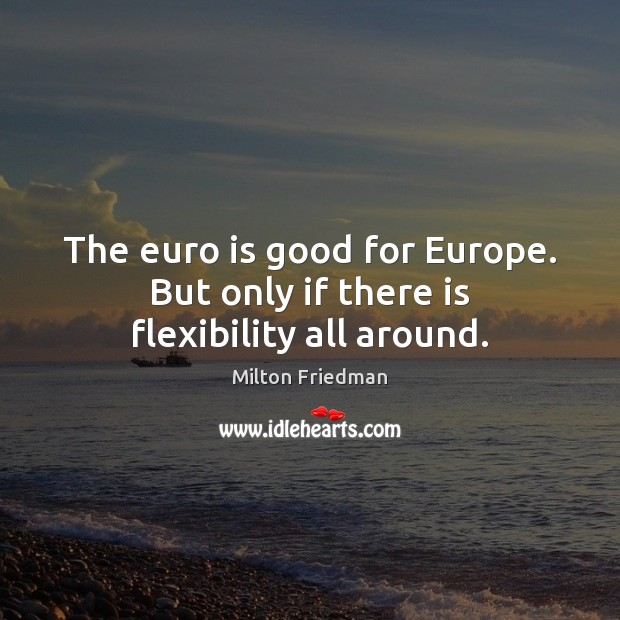 Image, The euro is good for Europe. But only if there is flexibility all around.