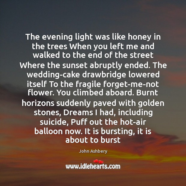 The evening light was like honey in the trees When you left John Ashbery Picture Quote