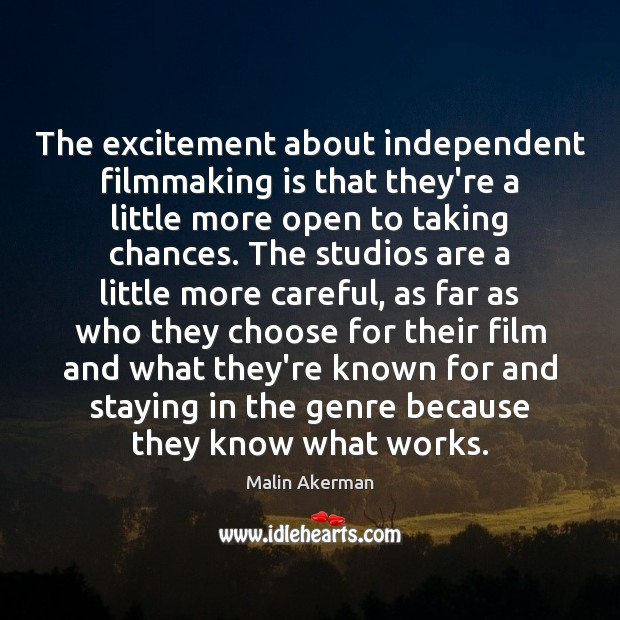 The excitement about independent filmmaking is that they're a little more open Malin Akerman Picture Quote