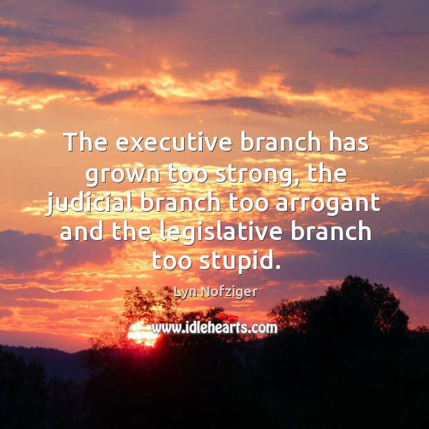 The executive branch has grown too strong, the judicial branch too arrogant and the legislative branch too stupid. Image