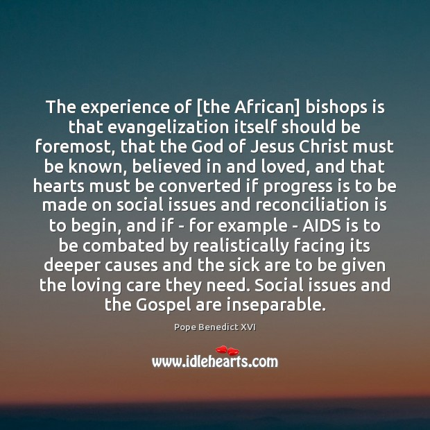 The experience of [the African] bishops is that evangelization itself should be Progress Quotes Image