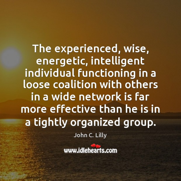 The experienced, wise, energetic, intelligent individual functioning in a loose coalition with Image