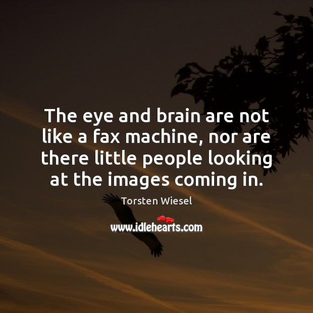 The eye and brain are not like a fax machine, nor are Image