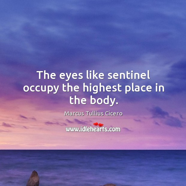 The eyes like sentinel occupy the highest place in the body. Image