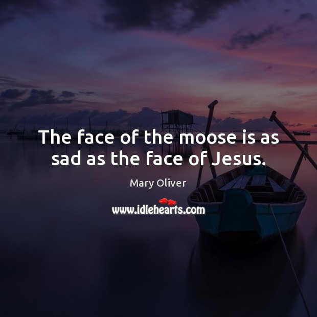 The face of the moose is as sad as the face of Jesus. Mary Oliver Picture Quote