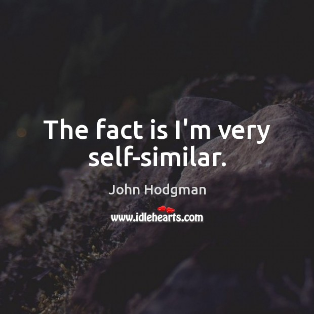 John Hodgman Picture Quote image saying: The fact is I'm very self-similar.