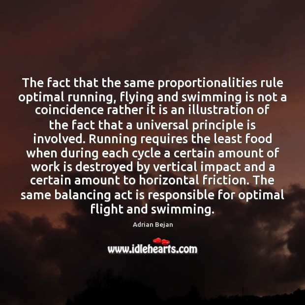 Image, The fact that the same proportionalities rule optimal running, flying and swimming