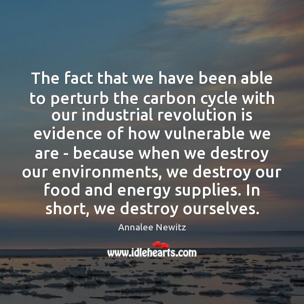 Image, The fact that we have been able to perturb the carbon cycle