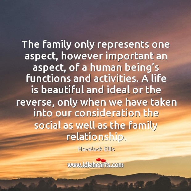 The family only represents one aspect, however important an aspect Life is Beautiful Quotes Image