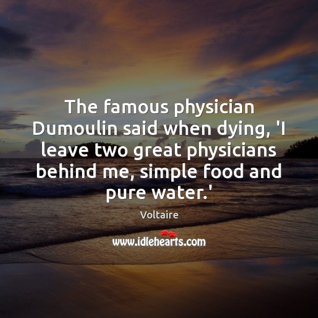 The famous physician Dumoulin said when dying, 'I leave two great physicians Voltaire Picture Quote