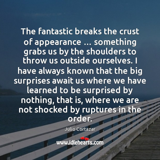 The fantastic breaks the crust of appearance … something grabs us by the Image