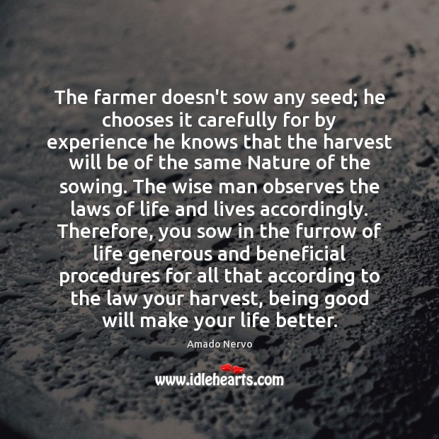 Image, The farmer doesn't sow any seed; he chooses it carefully for by