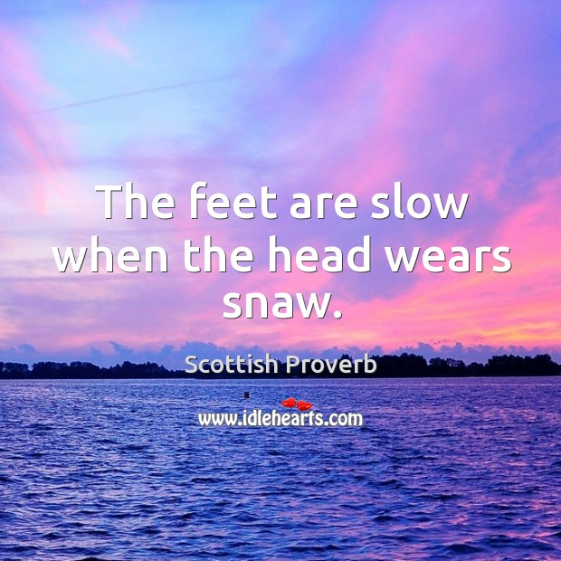 Image, The feet are slow when the head wears snaw.