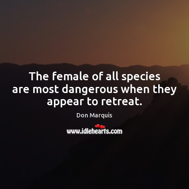 The female of all species are most dangerous when they appear to retreat. Don Marquis Picture Quote