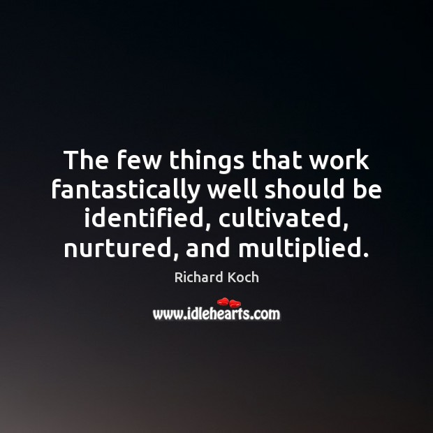 Image, The few things that work fantastically well should be identified, cultivated, nurtured,