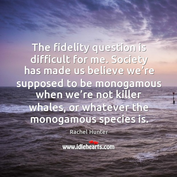 The fidelity question is difficult for me. Image