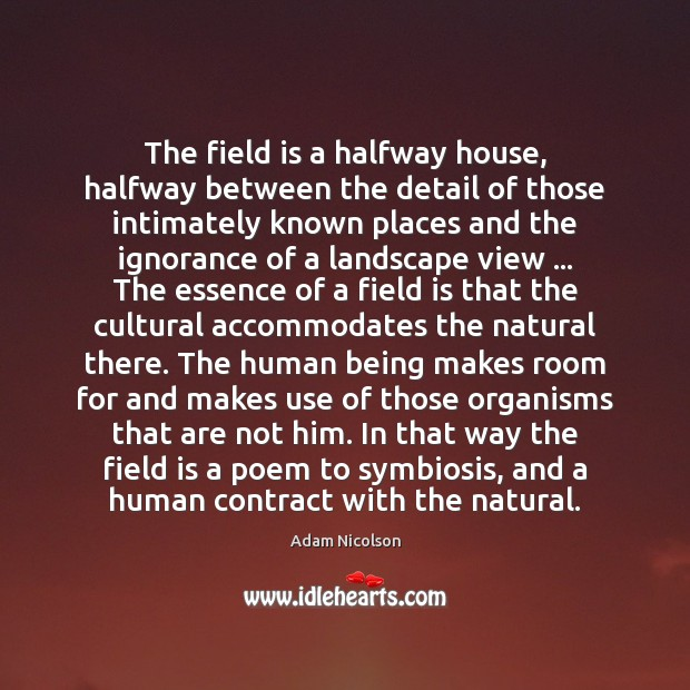 Image, The field is a halfway house, halfway between the detail of those