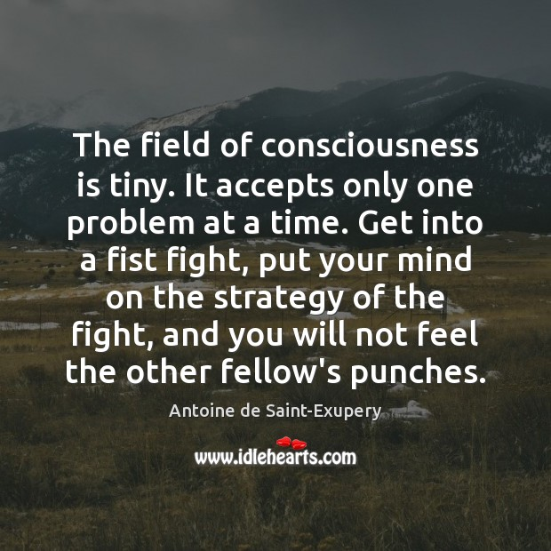 The field of consciousness is tiny. It accepts only one problem at Image