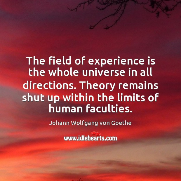 The field of experience is the whole universe in all directions. Theory Experience Quotes Image