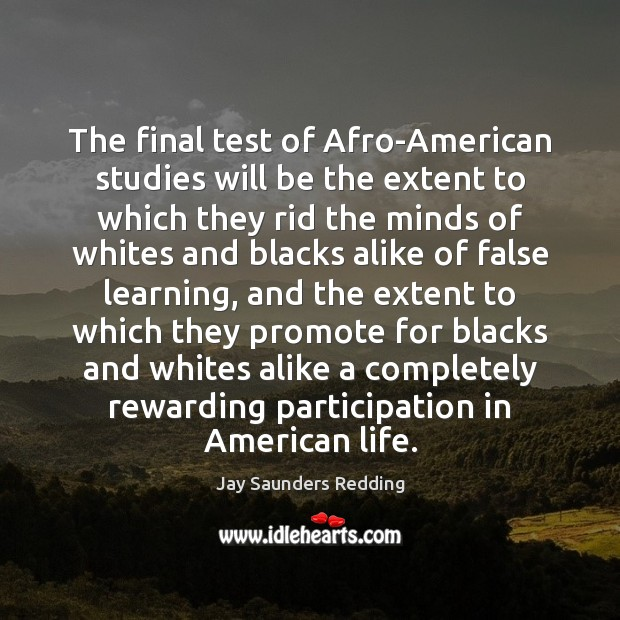 Image, The final test of Afro-American studies will be the extent to which