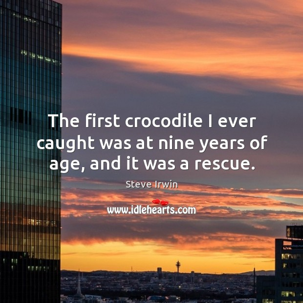 The first crocodile I ever caught was at nine years of age, and it was a rescue. Image